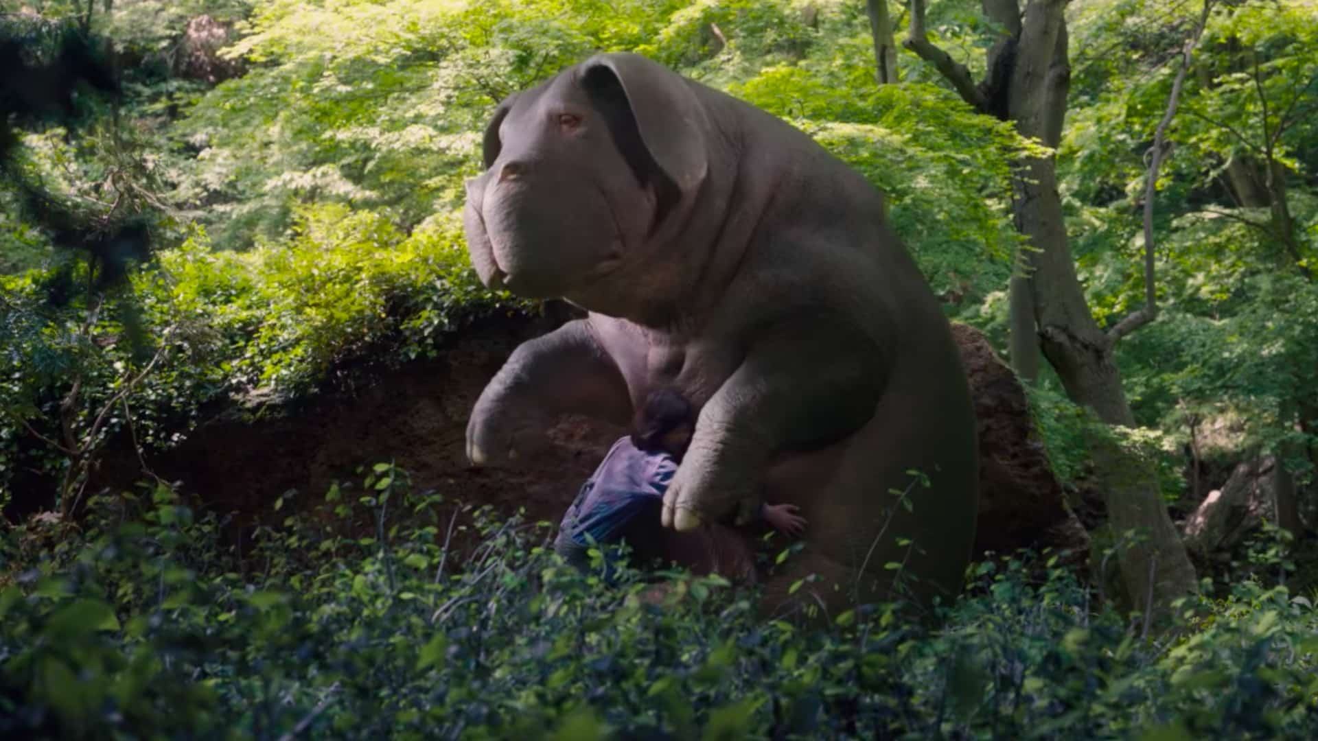 Best Movies on Netflix Okja