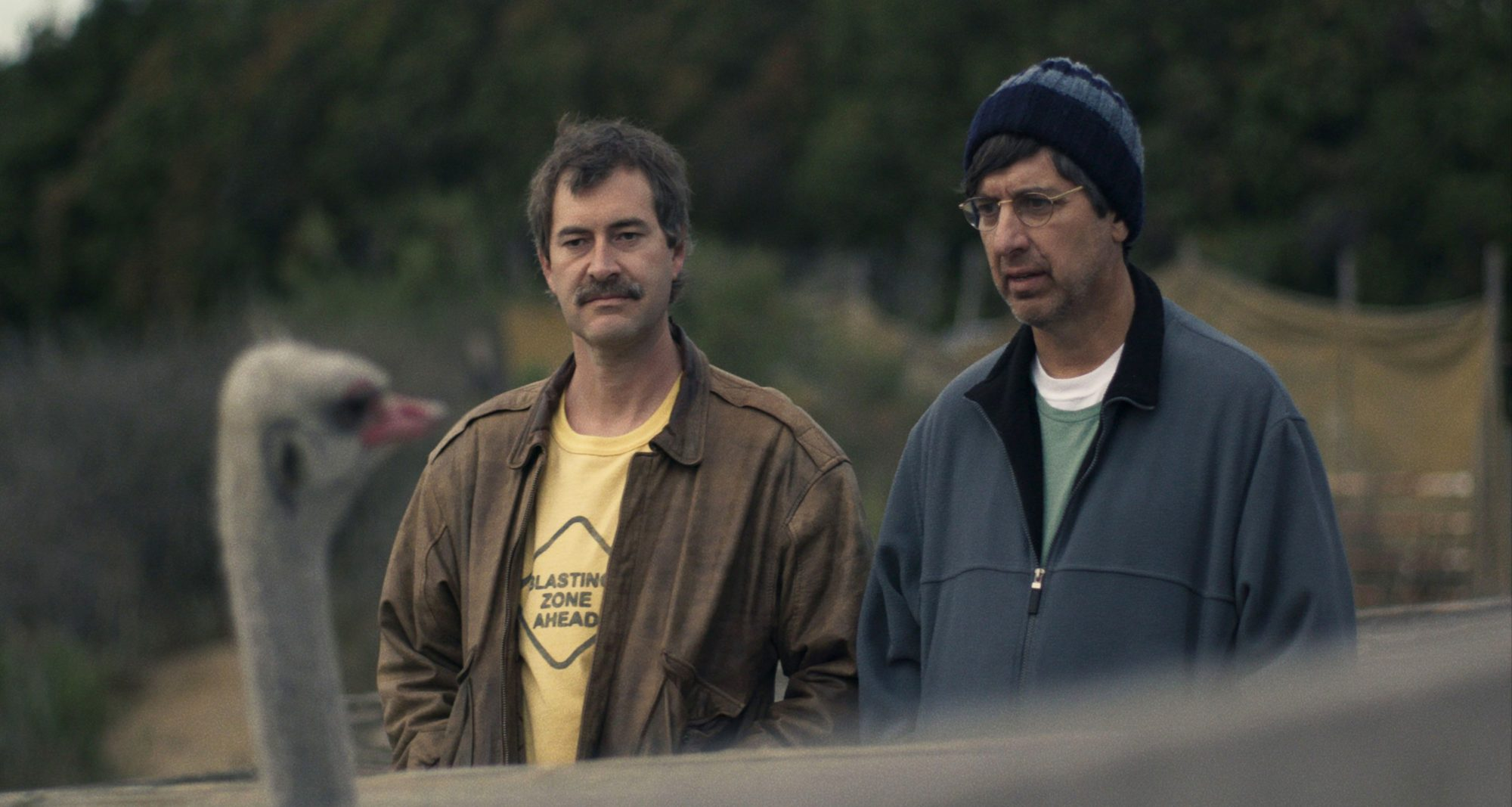 Best Movies on Netflix Paddleton